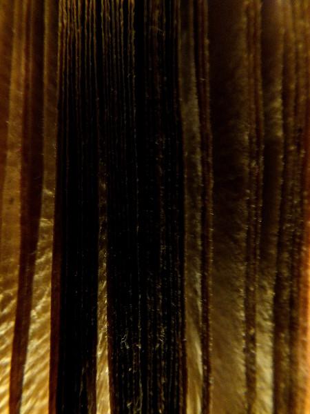 La peur de l`écrivain [2012] (Photo de Didier Desmet) [Artiste Infirme Moteur Cérébral] [Infirmité Motrice Cérébrale] [IMC] [Paralysie Cérébrale] [Cerebral Palsy] [Handicap]