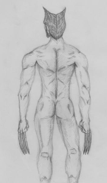 La vulnérabilité de Wolverine [2019] (Dessin de Didier Desmet) [Artiste Infirme Moteur Cérébral] [Infirmité Motrice Cérébrale] [IMC] [Paralysie Cérébrale] [Cerebral Palsy] [Handicap]