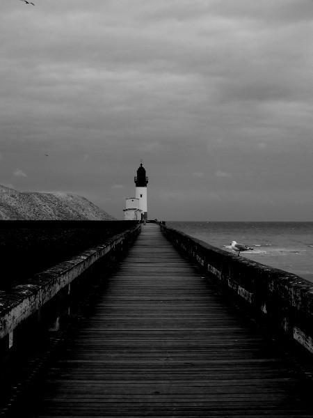 Le phare du Tréport et le goéland juvénile (Seine-Maritime - 76470) [2016] (Photo de Didier Desmet) Monochrome [Artiste Infirme Moteur Cérébral] [Infirmité Motrice Cérébrale] [IMC] [Paralysie Cérébrale] [Cerebral Palsy] [Handicap]