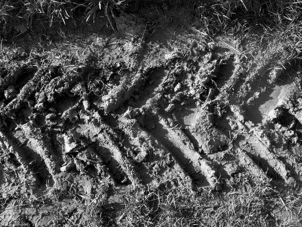Les champs des falaises d`Ault - Empreinte (Somme - 80460) [2005] (Photo de Didier Desmet) [Artiste Infirme Moteur Cérébral] [Infirmité Motrice Cérébrale] [IMC] [Paralysie Cérébrale] [Cerebral Palsy] [Handicap]