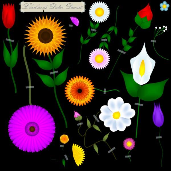 L`herbier de Didier Desmet [2020] (Création et conception graphique de Didier Desmet) [Artiste Infirme Moteur Cérébral] [Infirmité Motrice Cérébrale] [IMC] [Paralysie Cérébrale] [Cerebral Palsy] [Handicap] [Kawaii]