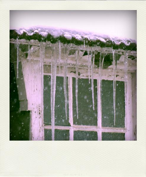 Lille - Barreaux de stalactites (Nord - 59000) [2013] (Photo de Didier Desmet) Fenêtre Neige Pola [Artiste Infirme Moteur Cérébral] [Infirmité Motrice Cérébrale] [IMC] [Paralysie Cérébrale] [Cerebral Palsy] [Handicap]