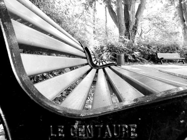Lille - Le banc (Le centaure) (59000 - Nord) [2012] (Photo de Didier Desmet) noir et blanc [Artiste Infirme Moteur Cérébral] [Infirmité Motrice Cérébrale] [IMC] [Paralysie Cérébrale] [Cerebral Palsy] [Handicap]