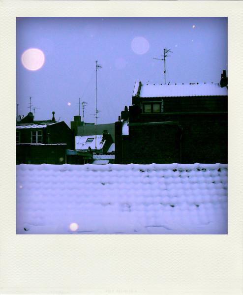 Lille - Les toits enneigées (Nord - 59000) [2009] (Photo de Didier Desmet) Pola [Artiste Infirme Moteur Cérébral] [Infirmité Motrice Cérébrale] [IMC] [Paralysie Cérébrale] [Cerebral Palsy] [Handicap]