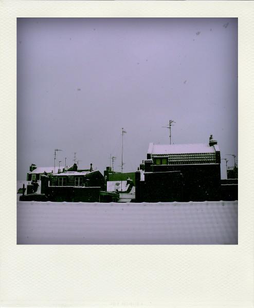 Lille - Les toits enneigées (Nord - 59000) [2009] (Photo de Didier Desmet) Sous la neige Pola [Artiste Infirme Moteur Cérébral] [Infirmité Motrice Cérébrale] [IMC] [Paralysie Cérébrale] [Cerebral Palsy] [Handicap]