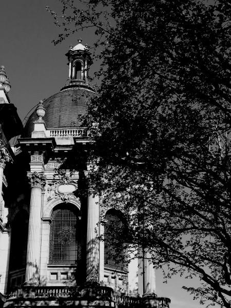 Lille - Palais des Beaux Arts - Place de la République (Nord - 59000) [2016] (Photo de Didier Desmet) 1 [Artiste Infirme Moteur Cérébral] [Infirmité Motrice Cérébrale] [IMC] [Paralysie Cérébrale] [Cerebral Palsy] [Handicap]