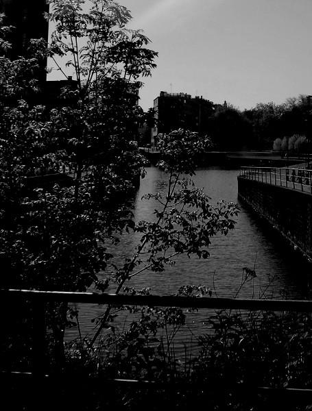 Lille - Quai du Wault - Dele (Nord - 59000) [2016] (Photo de Didier Desmet) [Artiste Infirme Moteur Cérébral] [Infirmité Motrice Cérébrale] [IMC] [Paralysie Cérébrale] [Cerebral Palsy] [Handicap]