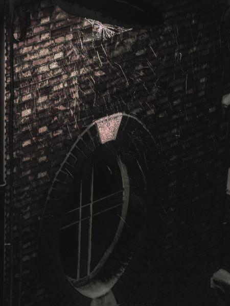 Lille sous la neige [2012] (Photo de Didier Desmet) HDR 2 [Artiste Infirme Moteur Cérébral] [Infirmité Motrice Cérébrale] [IMC] [Paralysie Cérébrale] [Cerebral Palsy] [Handicap]