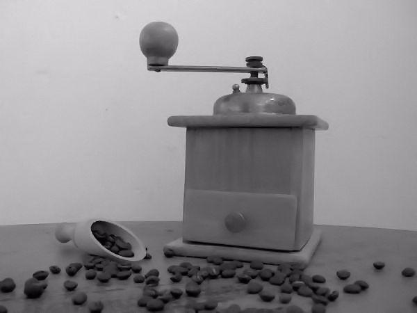 Nature morte [Essai 2005] (Photo de Didier Desmet) (4) [Artiste Infirme Moteur Cérébral] [Infirmité Motrice Cérébrale] [IMC] [Paralysie Cérébrale] [Cerebral Palsy] [Handicap]