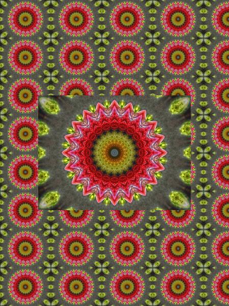 Ornement oriental [2012] (Création et conception graphique de Didier Desmet) [Motif] [Pattern] [Motifs] [Patterns] [Artiste Infirme Moteur Cérébral] [Infirmité Motrice Cérébrale] [IMC] [Paralysie Cérébrale] [Cerebral Palsy] [Handicap]