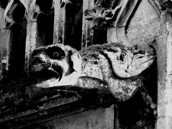Saint-Valery-sur-Somme - La gargouille - Eglise Saint-Martin (Somme - 80230) [2016] (Photo de Didier Desmet) Noir et blanc [Artiste Infirme Moteur Cérébral] [Infirmité Motrice Cérébrale] [IMC] [Paralysie Cérébrale] [Cerebral Palsy] [Handicap]