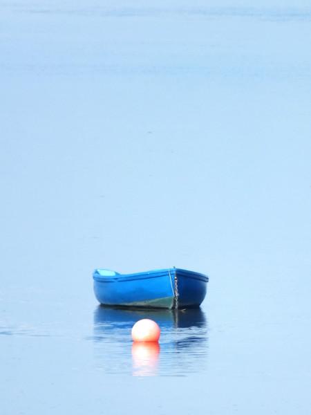 Saint-Valery-sur-Somme - Le bateau bleu et la bouée rouge 1 - La Somme (Somme - 80230) [2016] (Photo de Didier Desmet) [Artiste Infirme Moteur Cérébral] [Infirmité Motrice Cérébrale] [IMC] [Paralysie Cérébrale] [Cerebral Palsy] [Handicap]