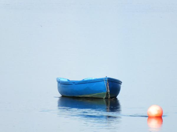 Saint-Valery-sur-Somme - Le bateau bleu et la bouée rouge 3 - La Somme (Somme - 80230) [2016] (Photo de Didier Desmet) [Artiste Infirme Moteur Cérébral] [Infirmité Motrice Cérébrale] [IMC] [Paralysie Cérébrale] [Cerebral Palsy] [Handicap]