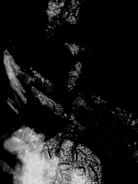 Scintillements [2017] (Photo de Didier Desmet) [Artiste Infirme Moteur Cérébral] [Infirmité Motrice Cérébrale] [IMC] [Paralysie Cérébrale] [Cerebral Palsy] [Handicap]